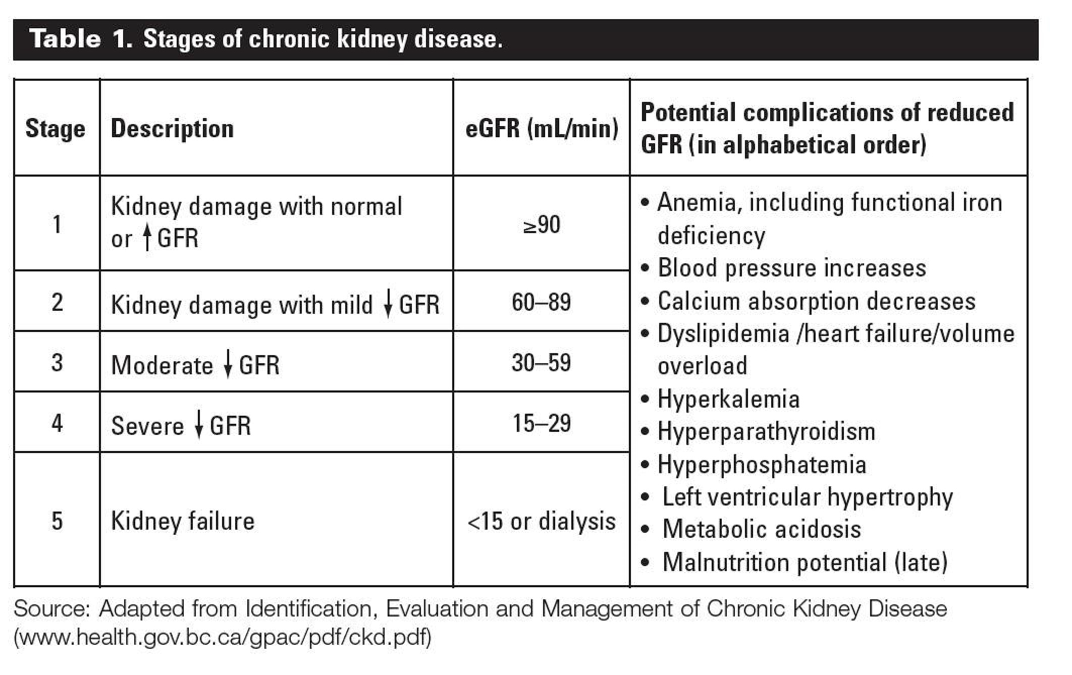 Understanding Stages of Chronic Kidney Disease Stage 1Chronic Kidney Disease Stage 5